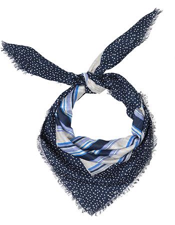 Bandana Delphinium Blue Nights from watMooi